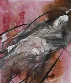 Elixir Tiburon 7-11-09