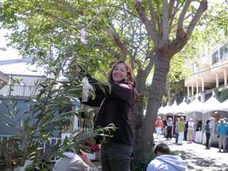 Tiburon Art Festival- Heather Martin Adorns a Tree