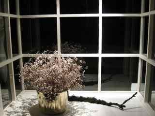 Elixir feng shui window 8 night opening shot
