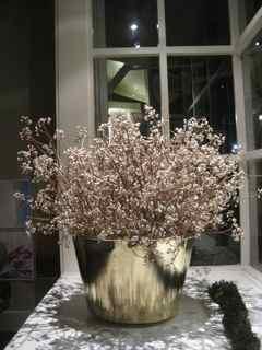 Elixir's Eighth Feng Shui Window Tallowberry Plus Brass Bucket