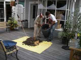 Tiburon Art Festival- Transporting Dirt for the Earth Mound